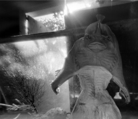 Zymo 127 Mermaid - photo from Zymo 127 pinhole camera, by Judith Hoffman