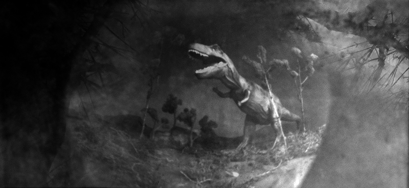 Pinhole photo of Late Cretaceous, taken with Tyrannosaurus photoventris pinhole camera